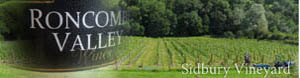 Sidbury Vineyard - Roncombe Valley wines