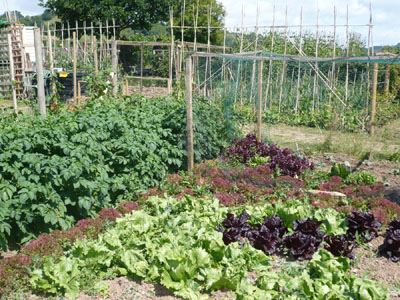 Sidbury Allotments Society